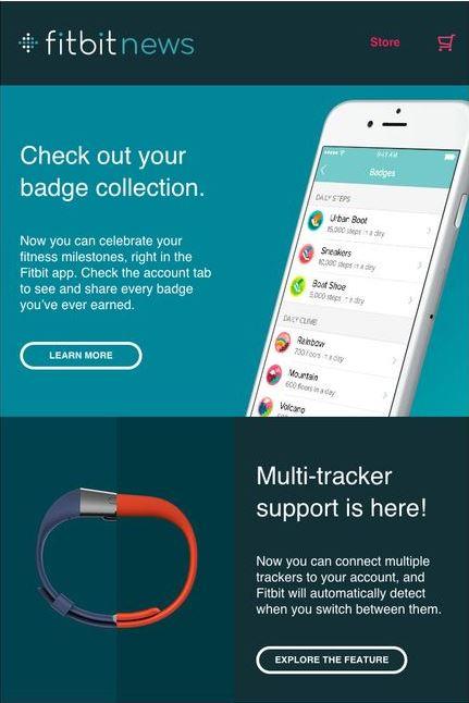 Fitbit Desktop